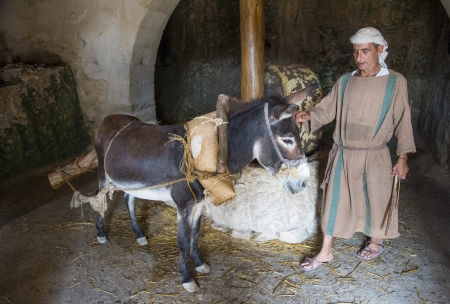 crist: NAZARETH, ISRAEL - OCT 15 : Millstone & donkey used for pressing olives to make olive oil in October 15 2012 at Nazareth Village, a historical re-creation of Nazareth as it was at the time of Christ