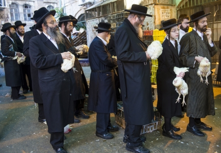 exprassion: JERUSALEM - SEP 25 : An ultra Orthodox Jewish men holds a chicken during the Kaparot ceremony held in Jerusalem Israel in September 25 2012