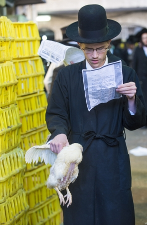 JERUSALEM - SEP 25 : An ultra Orthodox Jewish man prays with a chicken during the Kaparot ceremony held in Jerusalem Israel in September 25 2012