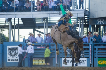reno: RENO , USA - JUNE 30 : Cowboy Participant in a Bucking Horse Competition at the Reno Rodeo  Professional Rodeo held in Reno Nevada , USA on June 30 2013  Editorial