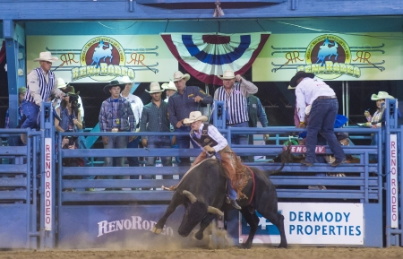 reno: RENO , USA - JUNE 30 : Cowboy Participant in a Bull riding Competition at the Reno Rodeo  a Professional Rodeo held in Reno Nevada , USA on June 30 2013  Editorial