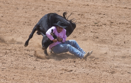 GALLUP , NEW MEXICO - AUGUST 10 : Cowboy Participates in a Steer wrestling Competition at the 92nd annual Indian Rodeo in Gallup, NM on August 10 2013