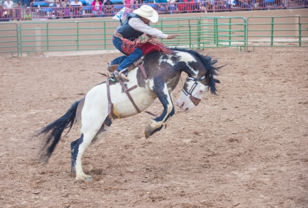 nm:  GALLUP , NEW MEXICO - AUGUST 10 : Cowboy Participates in a Bucking Horse Competition at the 92nd annual Indian Rodeo in Gallup, NM on August 10 2013