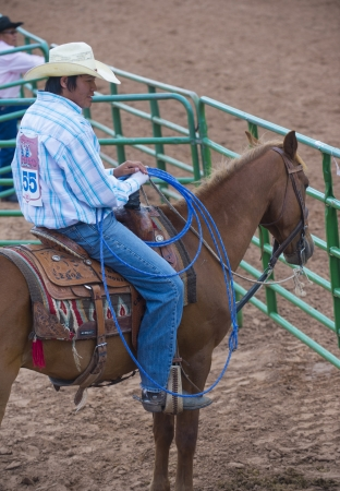nm: GALLUP , NEW MEXICO - AUGUST 10 : Cowboy Participates at the 92nd annual Indian Rodeo in Gallup, NM on August 10 2013