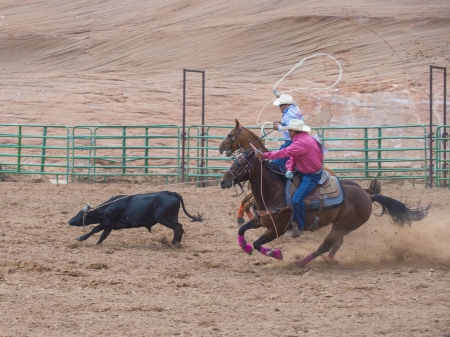 GALLUP , NEW MEXICO - AUGUST 10 : Cowboys Participates in in a Calf roping Competition at the 92nd annual Indian Rodeo in Gallup, NM on August 10 2013