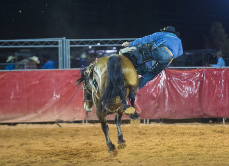 LOGANDALE , NEVADA - APRIL 10 : Cowboy Participating in a Bucking Horse Competition at the Clark County Fair and Rodeo a Professional Rodeo held in Logandale Nevada , USA on April 10 2014  Editorial