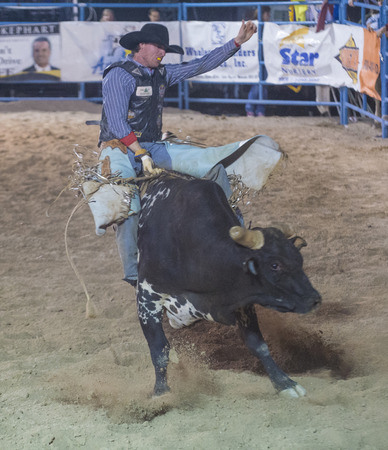 LAS VEGAS - MAY 16 : Cowboy Participating in a Bull riding Competition at the Helldorado days Rodeo , A professional Rodeo held in Las Vegas , Nevada on May 16 , 2014 Editorial