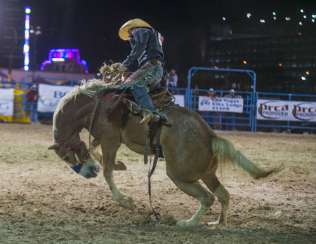 LAS VEGAS - MAY 16 : Cowboy Participating in a Bucking Horse Competition at the Helldorado days Rodeo , A Professional Rodeo held in Las Vegas on May 16 2014