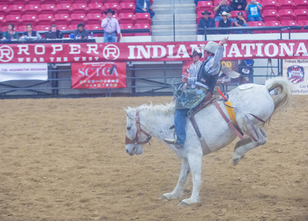 finals: LAS VEGAS - NOV 05 : Cowboy Participating in a Bucking Horse Competition at the Indian national finals rodeo held in Las Vegas, Nevada on November 05 2014 Editorial