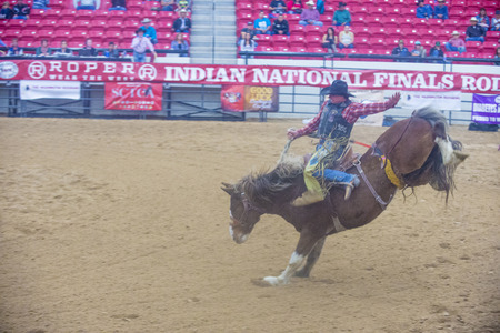 bucking horse: LAS VEGAS - NOV 05 : Cowboy Participating in a Bucking Horse Competition at the Indian national finals rodeo held in Las Vegas, Nevada on November 05 2014 Editorial
