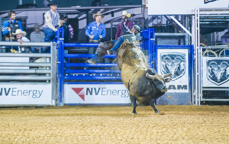LOGANDALE , NEVADA - APRIL 10 : Cowboy Participating in a Bull riding Competition at the Clark County Fair and Rodeo a Professional Rodeo held in Logandale Nevada , USA on April 10 2015