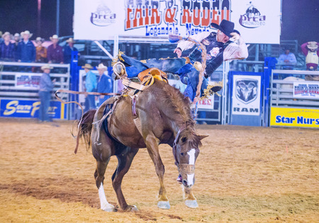 bucking horse: LOGANDALE , NEVADA - APRIL 10 : Cowboy Participating in a Bucking Horse Competition at the Clark County Fair and Rodeo a Professional Rodeo held in Logandale Nevada , USA on April 10 2015