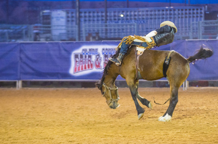 bucking bronco: LOGANDALE , NEVADA - APRIL 10 : Cowboy Participating in a Bucking Horse Competition at the Clark County Fair and Rodeo a Professional Rodeo held in Logandale Nevada , USA on April 10 2015