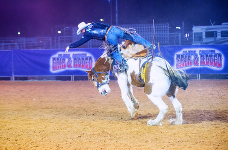 arena rodeo: LOGANDALE , NEVADA - APRIL 10 : Cowboy Participating in a Bucking Horse Competition at the Clark County Fair and Rodeo a Professional Rodeo held in Logandale Nevada , USA on April 10 2015