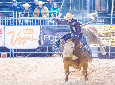 LAS VEGAS - MAY 16 : Cowboy Participating in a Bull riding Competition at the Helldorado days Rodeo , A professional Rodeo held in Las Vegas , Nevada on May 16 , 2015 Editorial