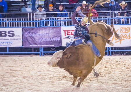 LAS VEGAS - MAY 16 : Cowboy Participating in a Bull riding Competition at the Helldorado days Rodeo , A professional Rodeo held in Las Vegas , Nevada on May 16 , 2015