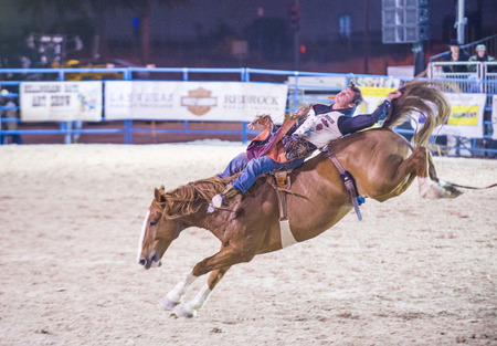 arena rodeo: LAS VEGAS - MAY 16 : Cowboy Participating in a Bucking Horse Competition at the Helldorado days Rodeo , A Professional Rodeo held in Las Vegas on May 16 2015