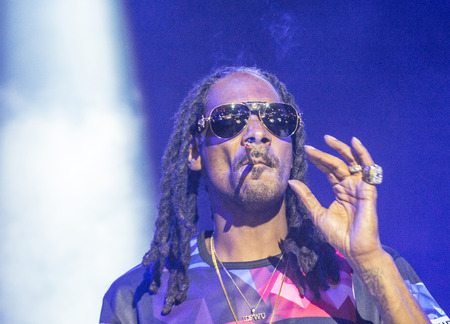 rapper: LAS VEGAS - SEP 26 : Rapper Snoop Dogg performs onstage during day 2 of the 2015 Life Is Beautiful Festival on September 26, 2015 in Las Vegas, Nevada. Editorial