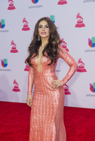 grammy: LAS VEGAS , NOV 19 : Actress Jessica Cediel attends the 16th Annual Latin GRAMMY Awards on November 19 2015 at the MGM Grand Arena in Las Vegas, Nevada