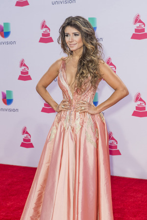 to paula: LAS VEGAS , NOV 19 : Singer Paula Fernandes attends the 16th Annual Latin GRAMMY Awards on November 19 2015 at the MGM Grand Arena in Las Vegas, Nevada