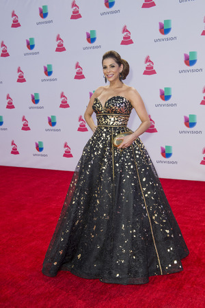 grammy: LAS VEGAS , NOV 19 : TV personality Lourdes Stephen attends the 16th Annual Latin GRAMMY Awards on November 19 2015 at the MGM Grand Arena in Las Vegas, Nevada