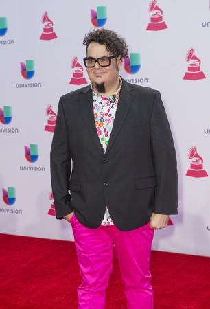 mr: LAS VEGAS , NOV 19 : Musician Mr Pauer attends the 16th Annual Latin GRAMMY Awards on November 19 2015 at the MGM Grand Arena in Las Vegas, Nevada
