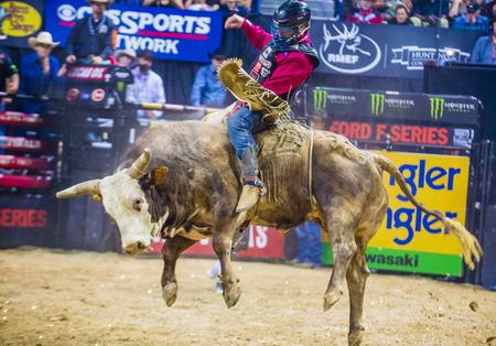 LAS VEGAS - OCT 24 : Cowboy Participating in the PBR bull riding world finals. The bull riding world championship held in Las Vegas Nevada on October 24 2015