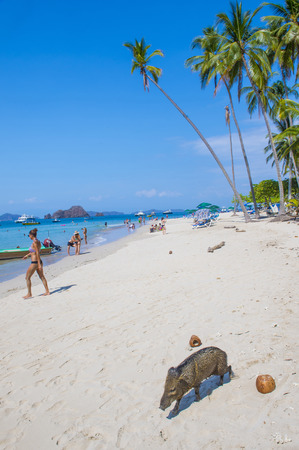 approximately: TORTUGA ISLAND , COSTA RICA - MARCH 25 : Tropical beach in Tortuga island Costa Rica on March 25 2016. The island covers approximately 300 acres and includes forests and beaches