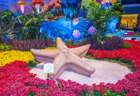 LAS VEGAS - JUNE 14 : Summer season in Bellagio Hotel Conservatory & Botanical Gardens on June 14 , 2016 in Las Vegas. There are five seasonal themes that the Conservatory undergoes each year.