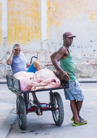 rikscha: Havanna, Kuba - 18. Juli: Eine kubanische Rikschafahrer in der alten Straße Havana am 18. Juli 2016. Rikscha sind eine beliebte Art des Transportes in Kuba