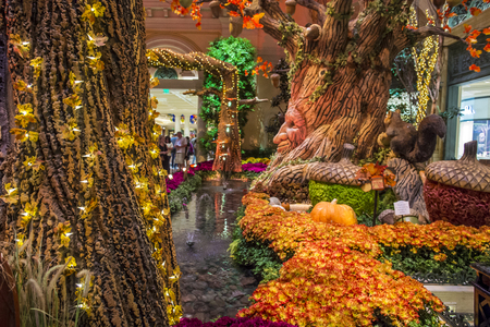 each year: LAS VEGAS - OCT 05 : Fall season in Bellagio Hotel Conservatory & Botanical Gardens on October 05 , 2016 in Las Vegas. There are five seasonal themes that the Conservatory undergoes each year.