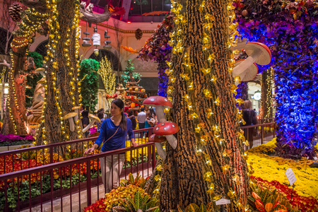 LAS VEGAS - OCT 05 : Fall season in Bellagio Hotel Conservatory & Botanical Gardens on October 05 , 2016 in Las Vegas. There are five seasonal themes that the Conservatory undergoes each year.