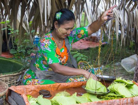 SHAN STATE , MYANMAR - SEP 06 : Burmese woman selling betel leaf in a market in Shan state Myanmar on September 06 2017 , in Myanmar people chewing the leaf with areca nut. 에디토리얼