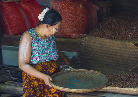 SHAN STATE , MYANMAR - SEP 06 : Burmese woman selling onion in a market in Shan state Myanmar on September 06 2017. Agriculture is the main industry in Myanmar