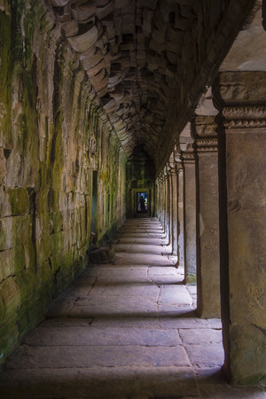 SIEM REAP , CAMBODIA - OCT 15 :  The Ta Prohm temple in Angkor Thom, Siem Reap Cambodia on October 15 2017 , Angkor Thom was the last and capital city of the Khmer empire. Banque d'images - 104746604