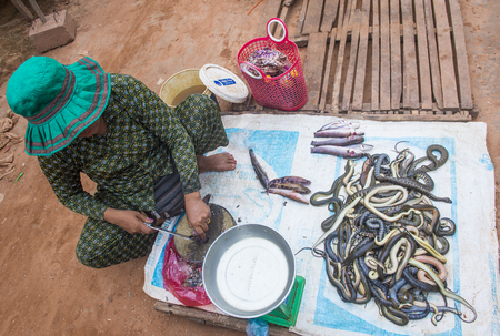 SIEM REAP , CAMBODIA - OCT 18 : Cambodian woman selling snakes in a market in Siem Reap Cambodia on October 18 2017. Agriculture is the main industry in Cambodia