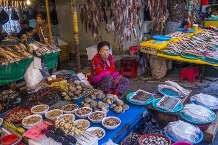 BUSAN , SOUTH KOREA - OCT 10 : The Jagalchi Fish Market in Busan South Korea on October 10 2018. The market is located on the edge of Nampo Port