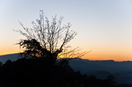 Sunset at top of mountain, Chiengmai, Thailand. Stock Photo - 8281206