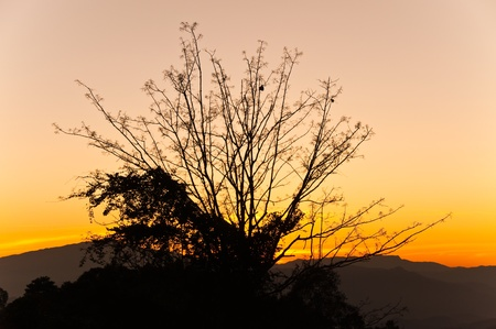 Sunset at top of mountain, Chiengmai, Thailand. Stock Photo - 8281305