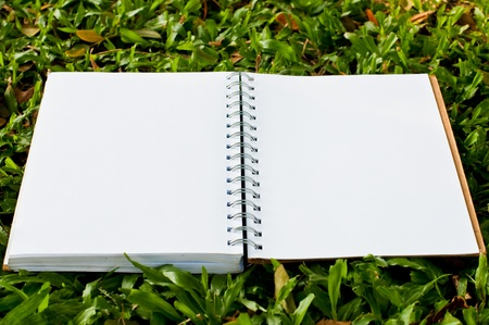 Blank notebook on green field at public park. Stock Photo