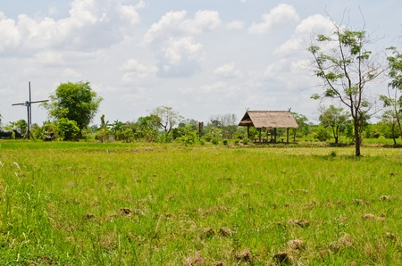 Landscape of countryside, Thailand. Stock Photo - 13213690