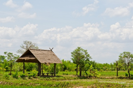 Landscape of countryside, Thailand. photo