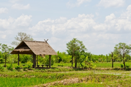 Landscape of countryside, Thailand. Stock Photo - 13608354