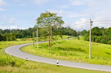 Road at Khao Yai national park, Thailand Stock Photo - 15441403