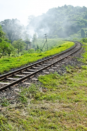 forest railway: Railway track in the forest, Thailand.