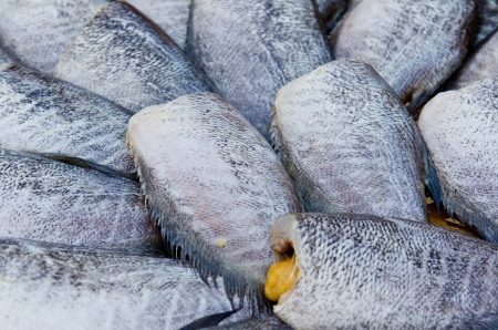 Dry fish in the market, Thailand. Stock Photo - 16459646