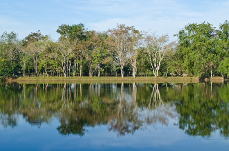 Landscape of Sakaeo pond at Sakaeo province, Thailand. photo
