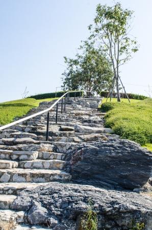 Ratchaphruek hill at Chiang Mai province, Thailand. Stock Photo - 21653680