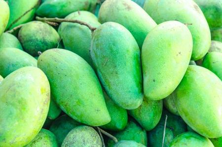 mango fruta: La fruta fresca de mango verde, Tailandia.