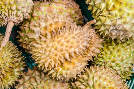 Durian fruits in the market, Thai style fruit, Thailand photo